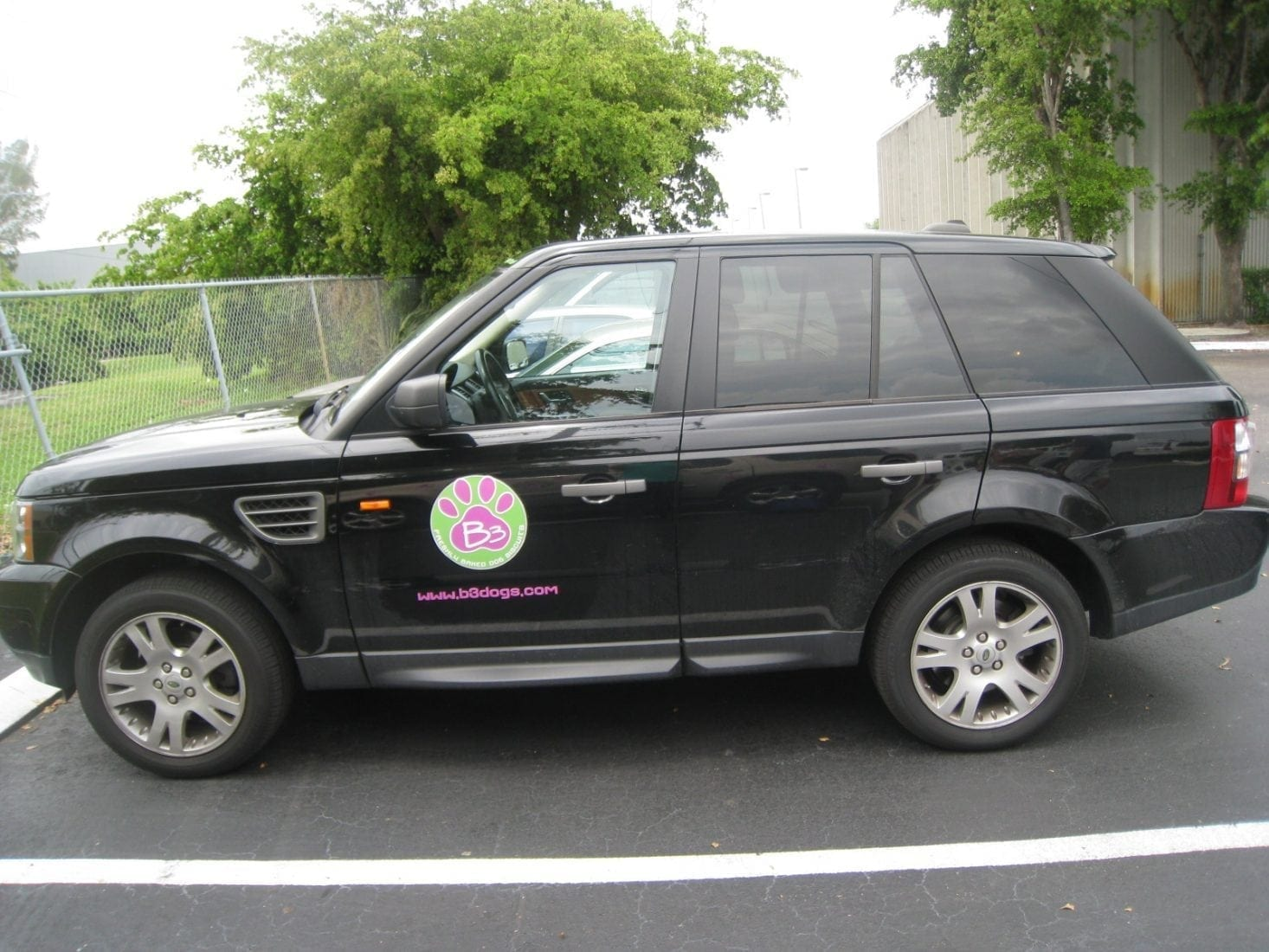 Large Format Die Cut Vinyl Stickers For Vehicles